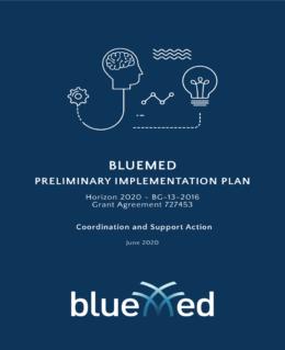 The BlueMed Implementation Plan published